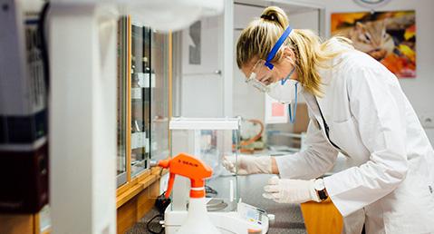 Dr. Kesselmeier- Dr. Hoffmann Karriereportal